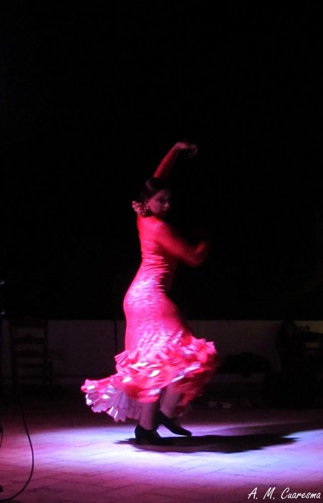 Velá flamenca en Aroche (9)