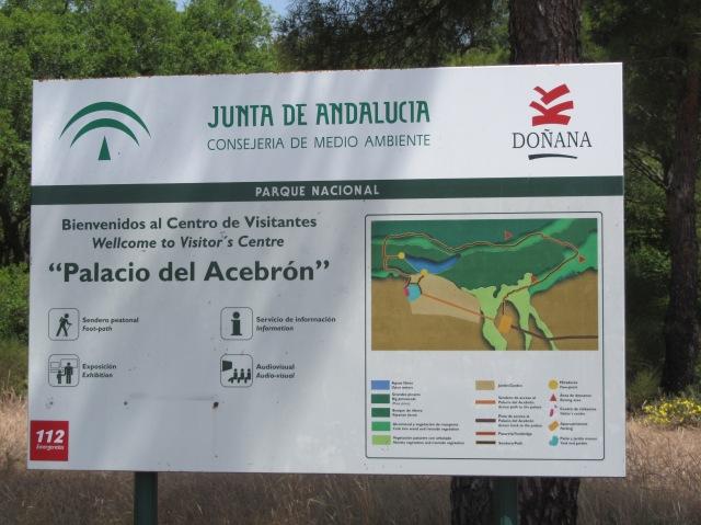 Doñana (15)