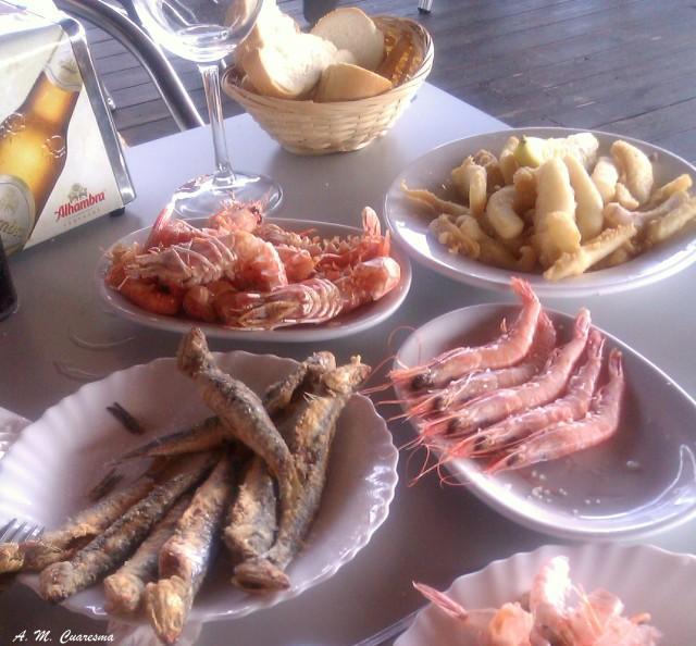 Doñana (3)