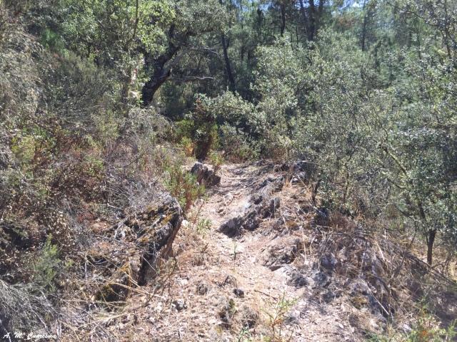I Concentración senderistas Sierra de Huelva.