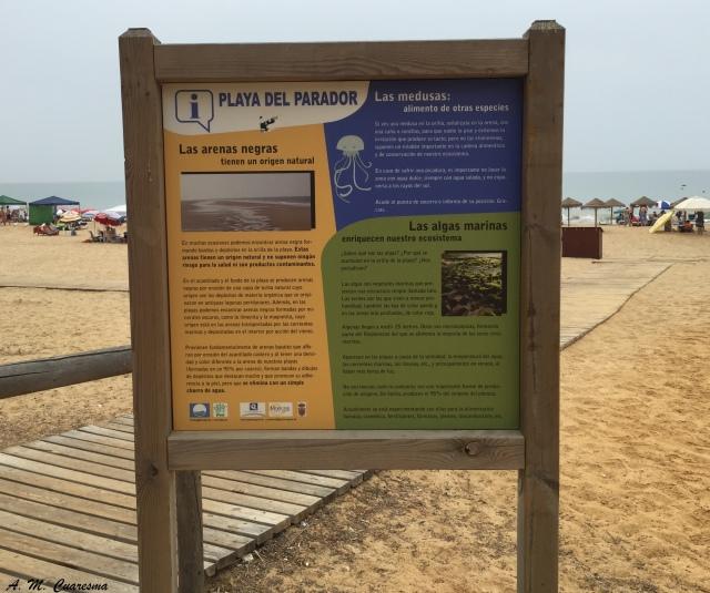 Playas Doñana
