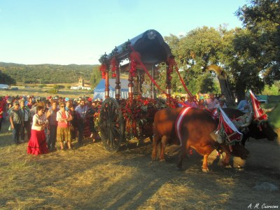 Romería de Aroche 2014 (88)