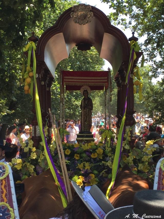 Romería de Aroche 2015 (18)
