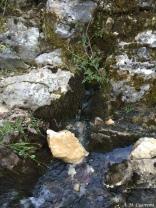 Nacimiento del Guadalquivir (11)