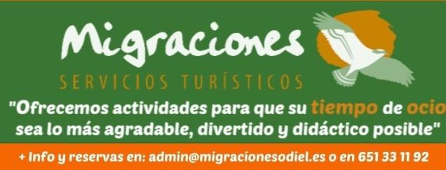 Migraciones Servicios Turísticos